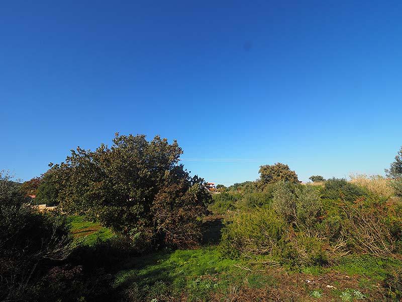 2.030 sqm plot in Roussospiti for sale